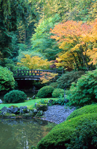 david%20m%20%20cobb%20photography_moonbridge_sm-japanese%20garden.jpg