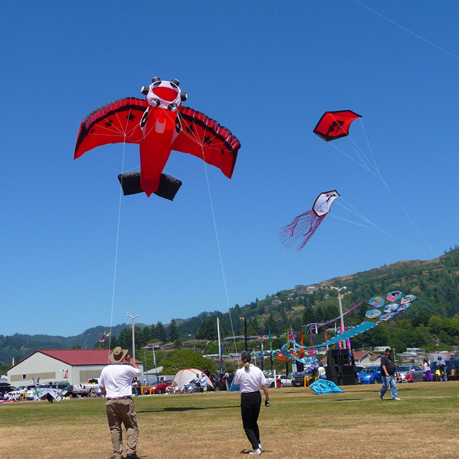 Southern Oregon Kite Festival