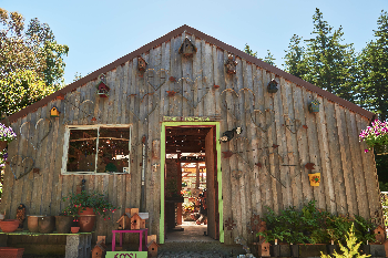 Beautiful gift shop and green house