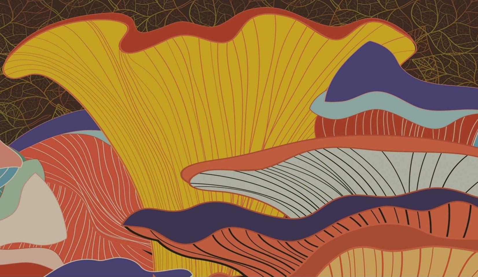 Yachats Mushroom Festival 2020 20th annual Yachats Village Mushroom Festival   Travel Oregon